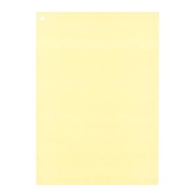 カラーレセプト用紙